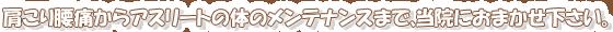 よこかわ整骨院 八王子 横川町 整骨院 保険適用 肩こり 腰痛 スポーツの怪我 各種リハビリ|診療概要画像